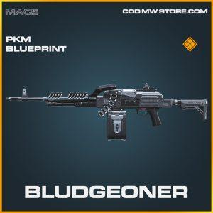 Bludgeoner PKM skin legendary blueprint call of duty modern warfare item