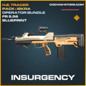 Insurgency FR 5.56 skin legendary blueprint call of duty modern warfare warzone item