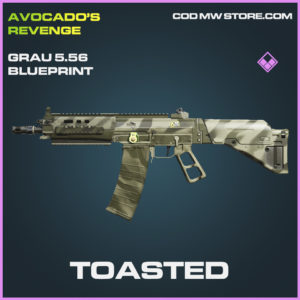 Toasted Grau 5.56 skin epic blueprint call of duty modern warfare warzone item