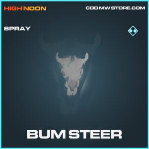 Bum Steer spray rare call of duty modern warfare warzone item