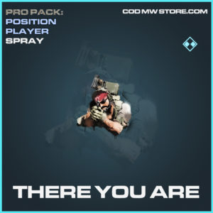 There you are spray rare call of duty modern warfare warzone item