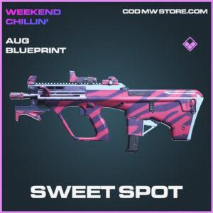 Sweet SPot Aug skin epic blueprint call of duty modern warfare warzone item