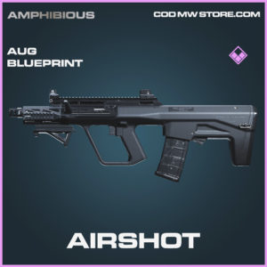 Airshot aug skin epic blueprint