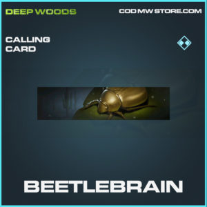 Beetlebrain calling card rare call of duty modern warfare warzone item