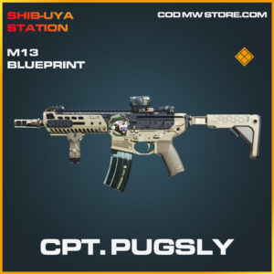 Cpt. Pugsly M13 skin legendary blueprint call of duty modern warfare warzone item