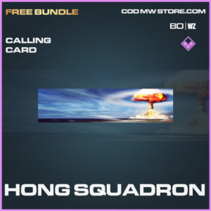 Hong Squadron calling card in in Black Ops Cold War and Warzone