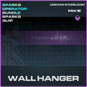 Wall Hanger Sparks Qup in Modern Warfare and Warzone
