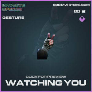 Watching You Gesture in Cold War and Warzone