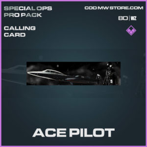 Ace Pilot calling card in Warzone and Cold War