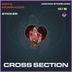Cross Section sticker in Warzone and Cold War